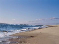 Vacations at the cottage inspire visits to the Cape Cod National Seashore, which stretches from the Provincetown area to near Chatham.