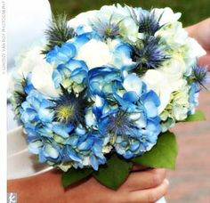 bouquet of white roses, white and blue hydrangeas, and spiky blue thistle. Crystal Wedding, Blue Wedding, Wedding Flowers, Wedding Colors, Amazing Weddings, Real Weddings, White Roses, Red Roses, White Flowers