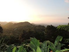 Minca,  ein bezauberndes Dorf in den Bergen inmitten der Natur und mit Blick auf Santa Marta und den Atlantik. Eine tolle Unterkunft in Minca findest du auf www.experiencescolombia.com