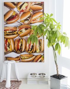 Modern Decor - A large photograph of cheeseburgers situated above two dog bowls