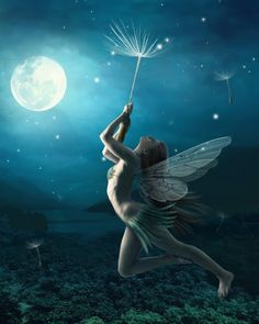 """""""Once you realize you are free to fly, then you will begin to soar""""  - Jasmeine Moonsong"""