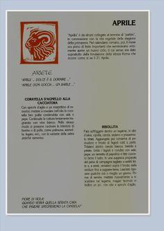 ex libris m de filippiS