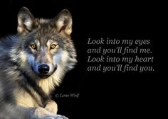"""""""Look into my heart and you'll find you."""" - The Lone Wolf"""