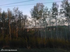 #Belarus through a Train Window.