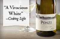 Pinot Gris | Our Wines | Ponzi Wines