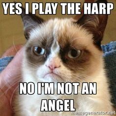 Grumpy Cat  - Yes I play the harp no i'm not an angel