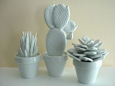 set of 3 modern white porcelain cactus