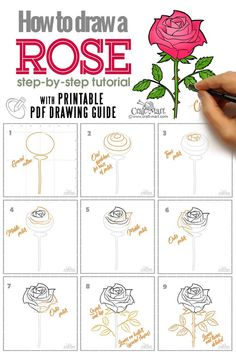 In our how to draw a rose flower guide we are making the rose drawing process easy for beginners yet not oversimplified. Learn how to draw a realistic rose! Rose Sketch, Flower Sketches, Art Drawings Sketches, Easy Drawings, Horse Drawings, Flower Art Drawing, Flower Drawing Tutorials, Easy Rose Drawing, Rose Step By Step