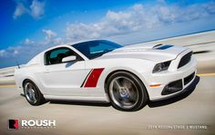 ROUSH Performance is excited to introduce the 2014 ROUSH Ford Mustang Lineup with 4 unique performers. See all of the available options right here at Muscle Mustang & Fast Fords Magazine. Roush Mustang, 2014 Ford Mustang, Mustang Fastback, Ford Mustangs, My Dream Car, Dream Cars, Roush Stage 3, Ford Mustang Wallpaper, E90 Bmw