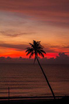 ✯ Sunrise/ God's beauty is all around us!