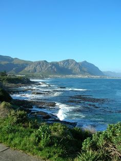 1 1/2 hrs from #capetown;lovely village-must visit MT @WineWldlfeWandr  #TravelChatSA Looking for whales in Hermanus! Embedded image permalink