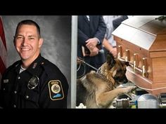 Police dog in moving picture is K9 unit of slain officer