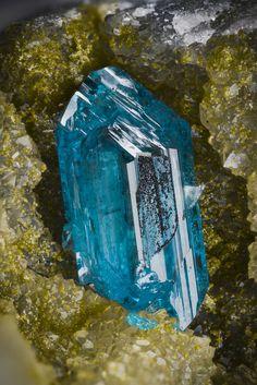 Caledonite, Reward Mine, Reward, Russ District, Inyo Mts, Inyo Co., California, USA. Crystal size : about 4mm tall