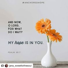My guest post to sweet to the soul.  #Repost @jana_sweettothesoul with @repostapp  There are times when life seems out of control mundane and Im left asking Lord is this all there is? Or how about when someone has hurt my feelings or betrayed me and my flesh wants to strike back with the whip of a tongue? Oh Lord why am I here and what is Your plan I ask? How much longer will I need to put up with this?  Then I think about Psalm 39 a song of distress. A message where we see David who guards…