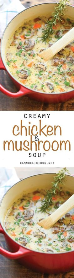 Creamy Chicken and Mushroom Soup – So cozy, so comforting and just so creamy. Be… Creamy Chicken and Mushroom Soup – So cozy, so comforting and just so creamy. Best of all, this is made in 30 min from start to finish – so quick and easy! I Love Food, Good Food, Yummy Food, Crockpot Recipes, Cooking Recipes, Healthy Recipes, Casserole Recipes, Bratwurst Recipes, Crockpot Meat
