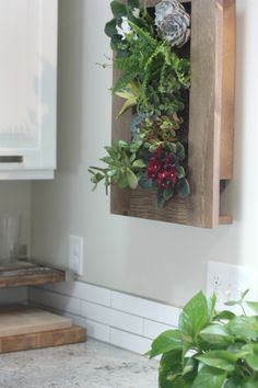"""Living Art Frame"" a wall mounted planter"