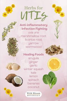 Natural Remedies For Uti, Uti Remedies, Herbal Remedies, Healing Herbs, Medicinal Herbs, Natural Healing, Natural Medicine, Herbal Medicine, Yoni Steam Herbs