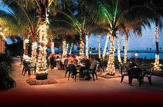 Red Fish Grill – Located at Matheson Hammock Park, this is one of the most wanted places to visit in Miami. - See more at: http://miamidesigndistrict.eu/miami-tours/top-beachfront-restaurants-in-miami/#sthash.bmganpHC.dpuf