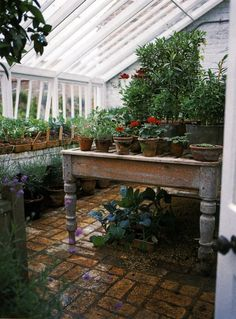 Inside the greenhouse. Brick floor and primitive painted table look lovely with terra cotta moss covered pots planted with geraniums and herbs. I also like the pea gravel under table for drainage. Maybe you could inset hardware cloth into an old table with bracing across for stability/drainage.