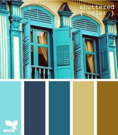 shuttered color from Design Seed - I want my bedroom walls that gold color