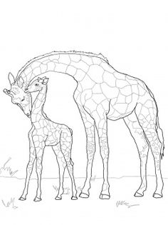 baby giraffe and mother coloring page from giraffes category select from 25744 printable crafts of cartoons nature animals bible and many more