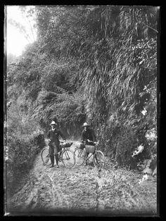 Pipiriki - Raetihi Road - Collections Online - Museum of New Zealand Te Papa Tongarewa Kiwiana, British Isles, Vintage Photographs, Deities, Old Photos, New Zealand, Country Roads, Museum, River