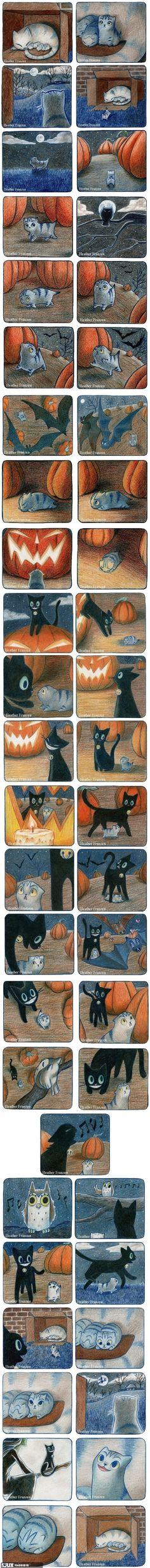 Eine Katze entdeckt die Welt..