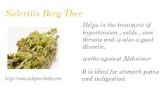 #Sideritis #Thee http://www.asclepius-herbs.nl