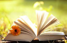 While you are traveling to the 2018 AANAC Annual Conference this week, enjoy reading some of these fun nursing poems in honor of National Poetry Month. National Poetry Month, Long Term Care, Connection, Poems, Reading, Blog, Poetry, Word Reading, A Poem