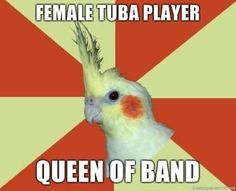 Female Tuba Player... Queen of Band.. Yes, that would be me. Please bow down.