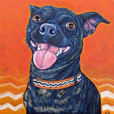 Swagga the Brindle Chihuahua and Miniature Pinscher Mixed Breed by Bethany.