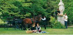 Foto: Schloss- und Picknicktour mit dem Schlosskutscher