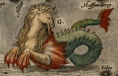 sea monster from Islandia map by Abaham Ortelius, 1587