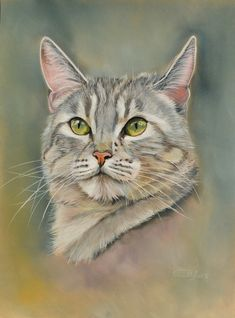 Learn To Draw Animals - Drawing On Demand Animal Paintings, Animal Drawings, Pastel Paintings, Cat Sketch, Cartoon Painting, Watercolor Animals, Art Watercolor, Pastel Art, Cat Drawing