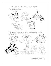 Planse de colorat si fise pentru copii: aprilie 2014 Toddler Learning Activities, Korean Language, Montessori, Kids, Blog, Tudor, Insects, Learning Games For Toddlers, Kids Learning Activities