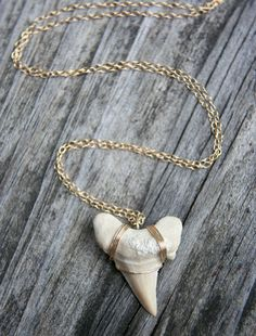 Did anyone else love Mila Kunis' shark tooth necklace from Forgetting Sarah Marshall? I sure did, then I bought my own.