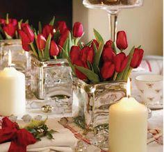 tulipanes de Navidad  Homes