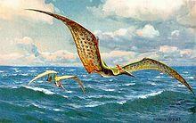 Ciencias naturales - Wikipedia, la enciclopedia libre