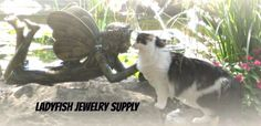 Ladyfish Jewelry Supply - OdzBodz Auctions Online - Future Home of Land of Odz Live Auctions