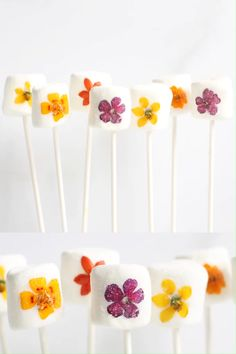 Edible flower marshmallows (marshmallow pops) are a beautiful, easy treat to make for Spring, Easter, Mother's Day or any day. Summer Cookies, Baby Cookies, Valentine Cookies, Baby Shower Cookies, Easter Cookies, Birthday Cookies, Heart Cookies, Christmas Cookies, Flower Cake Pops