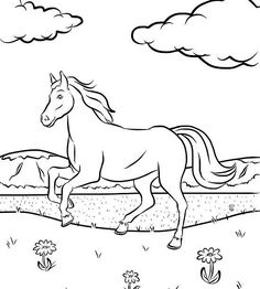 Mermaid Coloring Pages, Horse Coloring Pages, Coloring Books, Summer Coloring Sheets, Coloring Pages For Kids, Free Horses, Baby Horses, Horse Drawings, Animal Drawings