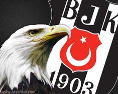 Beşiktaş Resimleri