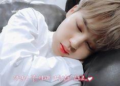 """𖨘̵ː͡➘ 𝙊𝘶̀ 𝘛𝘢𝘦𝘩𝘺𝘶𝘯𝘨 𝘦𝘯𝘷𝘰𝘪𝘦 𝘥𝘦𝘴 """"𝘷𝘪𝘯𝘦𝘴 𝘳𝘦𝘧? Bts Jimin, Taehyung, Park Ji Min, Foto Bts, Bts Photo, Jikook, Bts Sleeping, Fanfiction, Jimi Bts"""