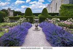 The pretend client likes formal gardens and I wanted to use a lavender-lined path