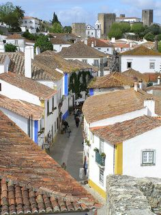 Óbidos , Portugal -  We enjoyed a week of bicycling beautiful Portugal. The bright white, we learned, is a white marble whitewash, applied almost every year. The bright blue and gold trim colors are to keep out bad spirits. As well, they designate your station: blue for commoner, gold for nobility, or higher station. Once we knew this, we saw Portugal with new eyes.  @Barbara Wirth Art believes with enlightenment comes understanding, and is grateful.