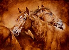The peaceful gesture and the relationship of the horses should infuse any room in which this piece hangs with gentleness and comfort.  This is a new piece of artwork by Chris Owen.
