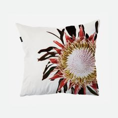 clintonfriedman - Photo Print Scatter Cushion Covers