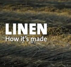 What is Flax Linen & how Linen is made? Flax Plant, French, Blog, French People, Blogging, French Language, France