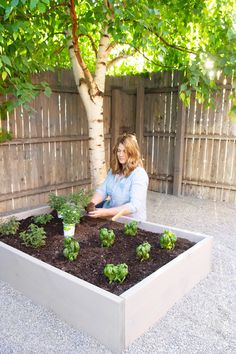 Garden Beds {The Secret Garden Makeover Raised garden beds with herbs garden beds with herbs Raised Herb Garden, Garden Soil, Side Garden, Types Of Vegetables, Growing Vegetables, Garden Makeover, House Plant Care, Gardening For Beginners, Backyard Landscaping