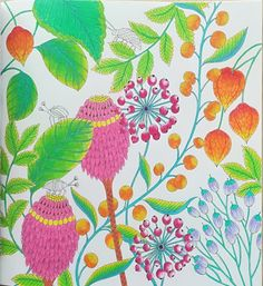 Millie Marotta Tropical World |colored with Koh i nor Gioconda soft pastels